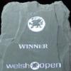 Онлайн трансляция 1 дня Welsh Open 2013