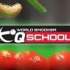 Онлайн трансляции Q School 2017